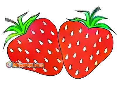 Gambar Mewarnai Buah Strawberry dapat Melatih Kreatifitas Anak