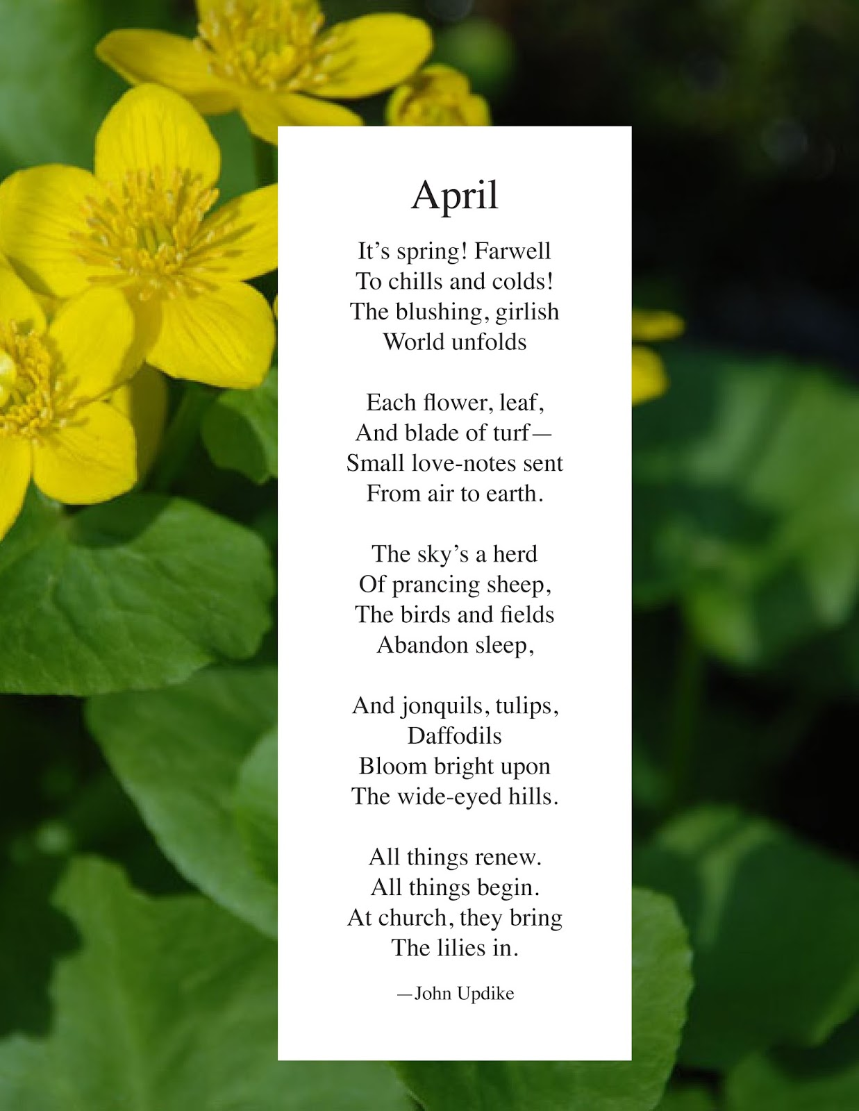 Your Favorite Monthly Blog Post Another April Poem