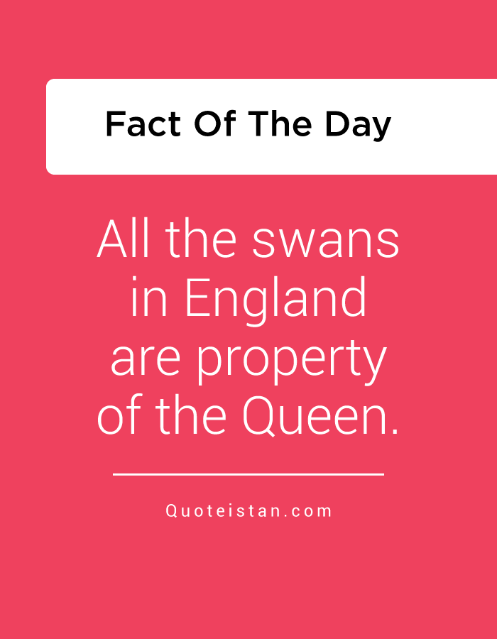 All the swans in England are property of the Queen.