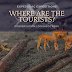 Where are the tourists? - the case of Coishco (Peru)