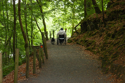 A dark path through the forest, with me in my wheelchair and Liggy at my side, pushing up a hill.
