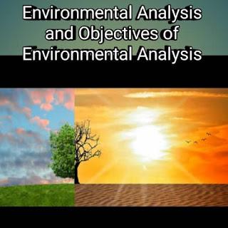 Environmental Analysis and Objectives of Environmental Analysis
