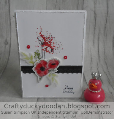 Craftyduckydoodah!, Susan Simpson UK Independent Stampin' Up! Demonstrator, Painted Poppies, Supplies Available 24/7 in my online store,
