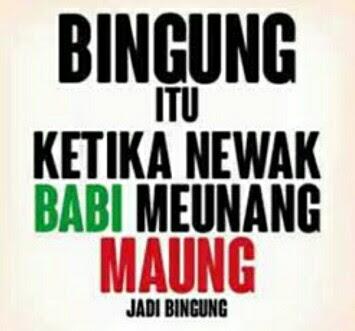 Kata Kata Mutiara Lucu Bahasa Sunda Buat Status WhatsApp (WA)