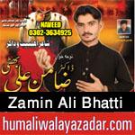 https://aliwalayazadar.blogspot.com/2020/08/zamin-ali-bhatti-nohay-2021.html