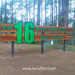 http://www.nurulfitri.com/2016/12/wisata-hutan-pinus-cikole-lembang.html