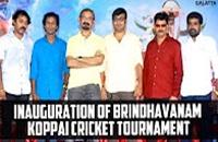 Inauguration of Brindhavanam Koppai Cricket Tournament