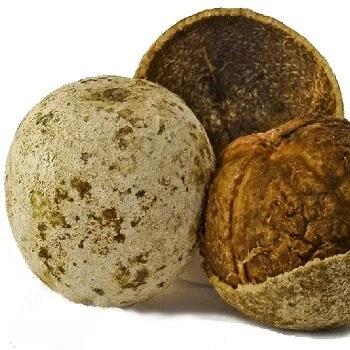 कवठ, Wood Apple fruits name in Marathi