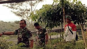 Kolonel Asep Rahman Butuh Jutaan Pohon Buah Untuk Hujaukan-KBU