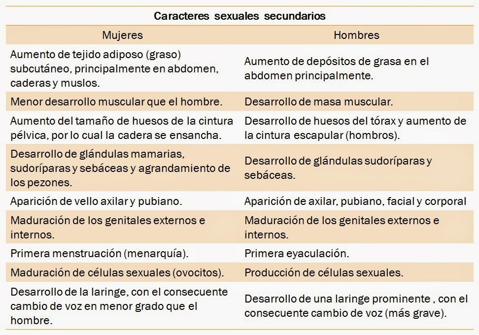 Caracteres sexuale primarios y secundarios del ser humano