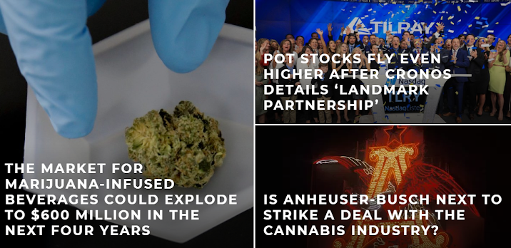 Everything You Need Know About Cannabis