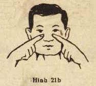 Hình 21b