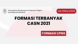 Detail Jadwal Seleksi dan Formasi Terbanyak CPNS 2021