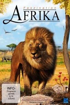 Baixar Filme África Extraordinária Torrent Grátis