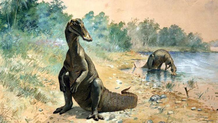 """Fósiles de dinosaurios demuestran que """"algo raro pasó"""" en el final de su era"""