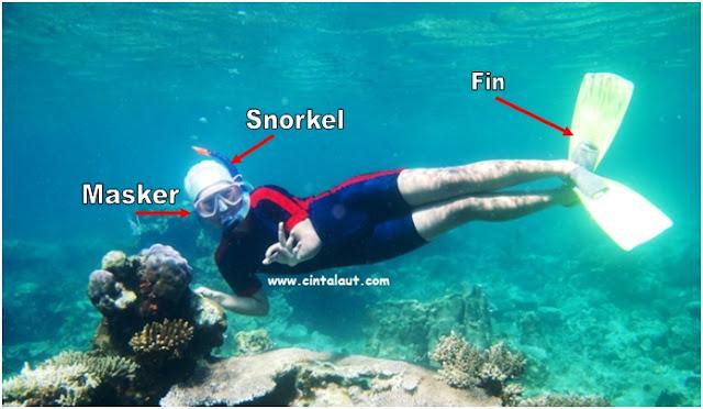 gambar nama-nama alat snorkeling