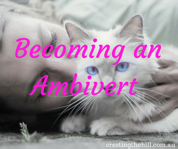 Finding that when you're neither extroverted or introverted - you are an Ambivert