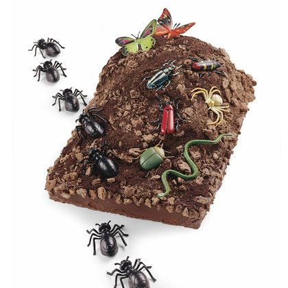 Bug Mountain Cake Recipe