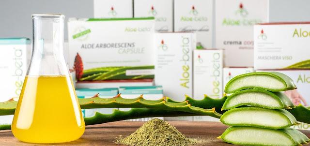 Perchè l'Aloe Arborescens HDR?