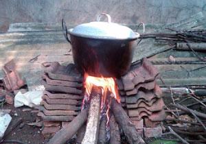Energi alternatif yaitu Kayu bakar