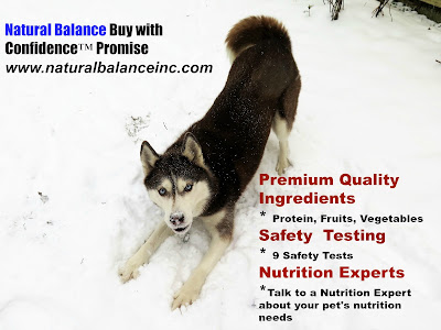 Premium quality ingredients, Safety Testing, Nutrition Experts you can speak to, and 100% Satisfaction with Natural Balance pet food.