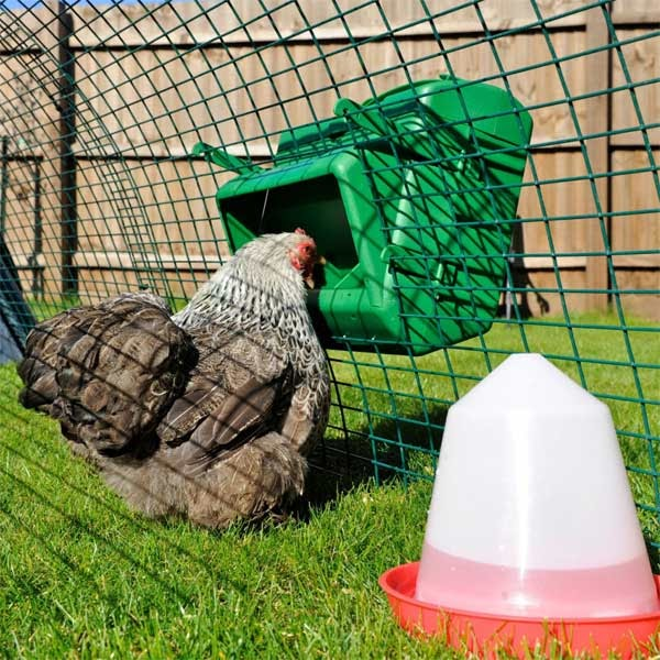 Anti-Vermin Poultry Feeder