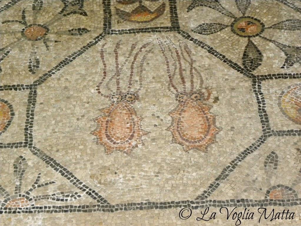 Aquileia basilica mosaici
