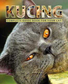 Sukses Beternak Kucing Ras Kumpulan Artikel Kucing