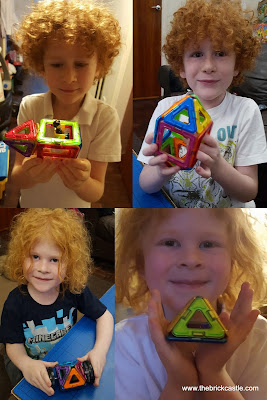 Building 3D models with magnetic shapes review