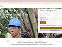 Tingkatkan Produktivitas Kelapa Sawit, Instiper Yogya Luncurkan Aplikasi Sawitkita