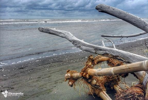 Pantai Kartika Jaya Kabupaten Kendal