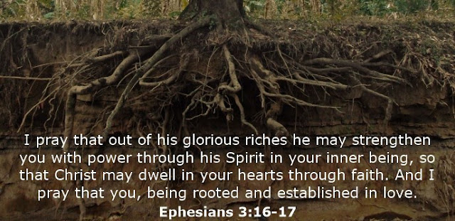 I pray that out of his glorious riches he may strengthen you with power through his Spirit in your inner being, so that Christ may dwell in your hearts through faith. And I pray that you, being rooted and established in love.