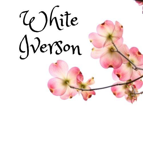 Post Malone White Iverson lyrics
