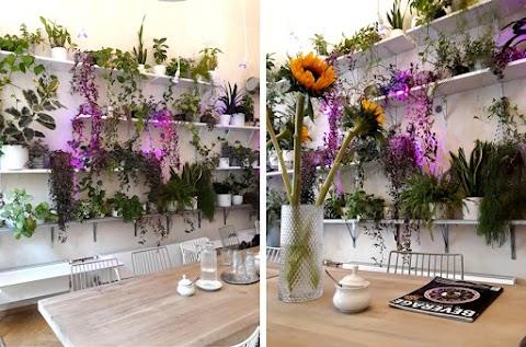 Odpoledne v kavárně - Urban Café