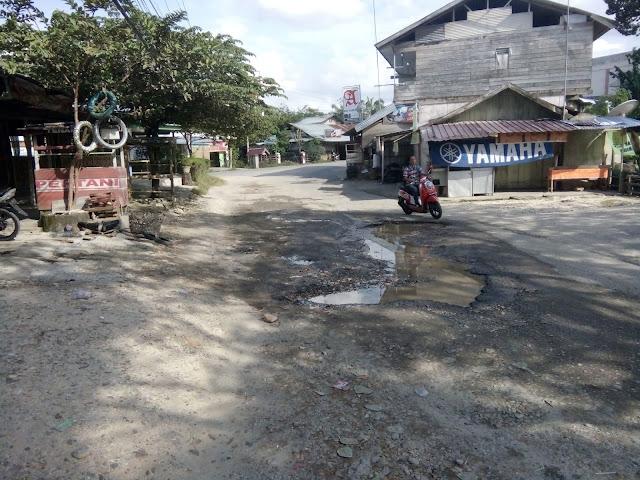 Jalan di Gampong Sidodadi Rusak Parah, Warga dan Mahasiswa mengeluh