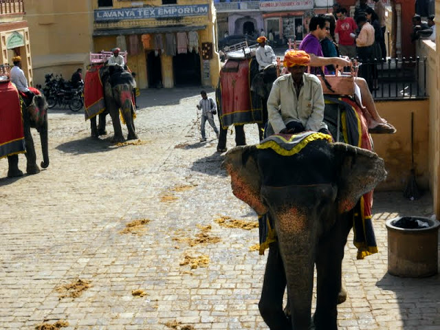 Elephant rides to the entrance of Amber Fort in Jaipur India