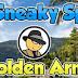 Super Sneaky Spy Guy Golden Arm 2