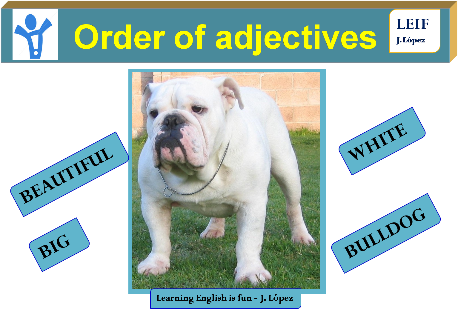 Basic English Ii U8 Order Of Adjectives
