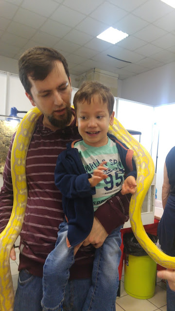 wąż wystawa zwierząt