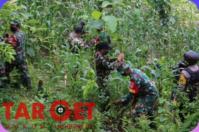 Lestarikan Alamku, Team Gabungan Kodim Pati Giat Reboisasi di Pegunungan Kendeng