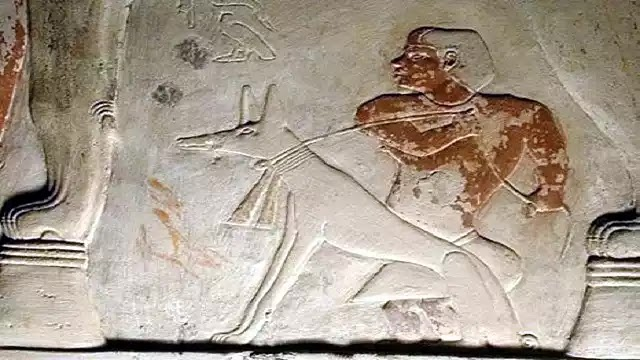 Ancient Egyptian Dogs