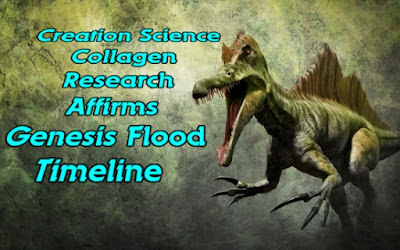 Creationists teamed up to conduct research on bones and collagen. The results support the biblical timeline and are sure to be problematic for secularists.