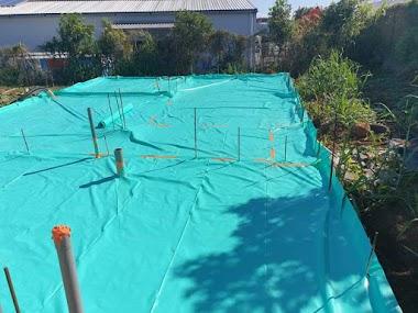 Attention aux traitements préventif contre les termites avant la construction de votre maison. Etre informés !
