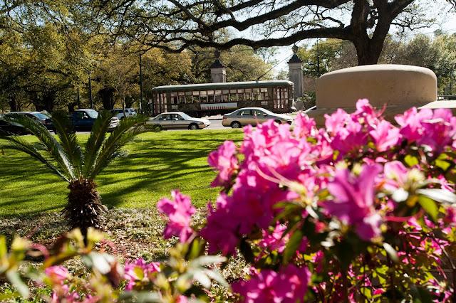 Spring Scholars Tulane University Admission Blog - Jeff Schiffman