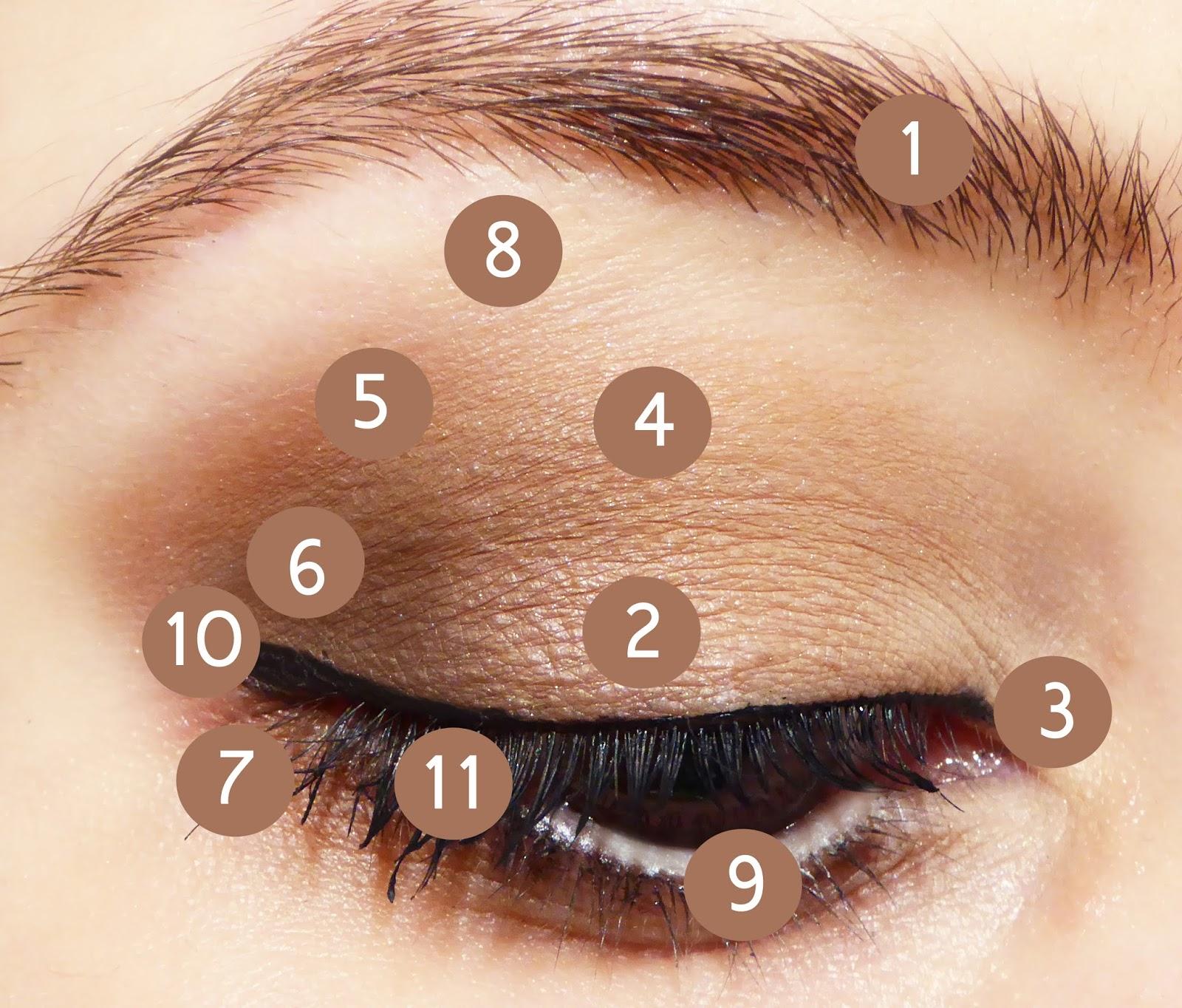 Top Make up occhi naturale e veloce con la Palette Natural Matte di  ZY51