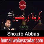 http://www.humaliwalayazadar.com/2017/10/shozib-abbas-nohay-2018.html