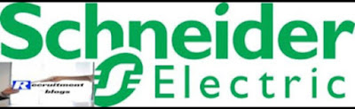 Treasury accountant at Schneider Electric