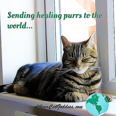 tabby cat with paw resting on the globe