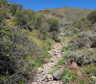 Easier to hike on a dry creek bed in Idaho's Mount Bennett Hills