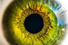 Penyebab Mata Kuning dan Cara Mengobatinya